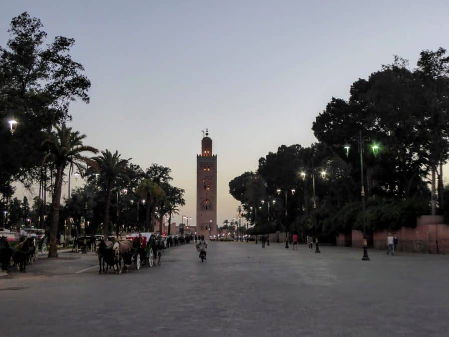 Surviving Marrakesh | MVMT Blog
