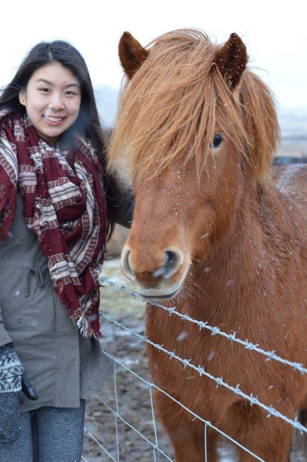 A weekend getaway to Iceland | MVMT Blog